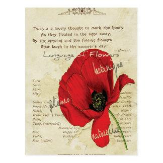 花のビクトリアンな言語 ポストカード