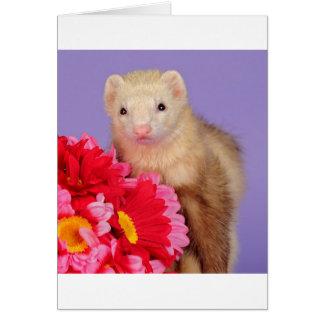 花のフェレット カード