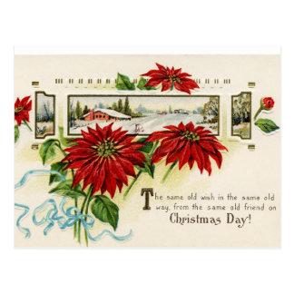 花のポインセチアの郵便はがき ポストカード