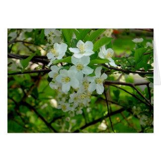 花のメッセージカード カード