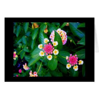 花のリング カード