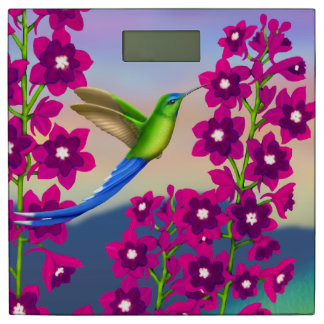 花の体重計の熱帯ハチドリ 体重計
