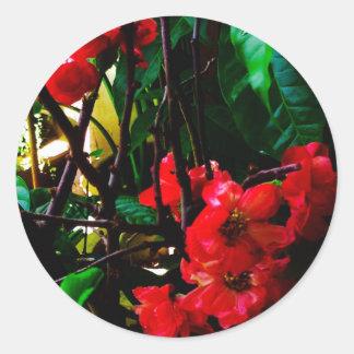 花の円形のstiker ラウンドシール