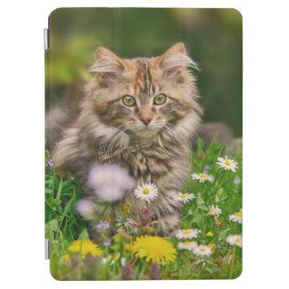花の写真のかわいく柔らかいメインのあらいぐまの子ネコ猫 iPad AIR カバー