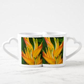 花の写真撮影Heliconiaの極楽鳥 ペアカップ