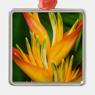 花の写真撮影Heliconiaの極楽鳥 メタルオーナメント