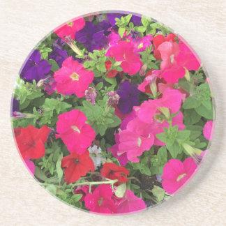 花の写真 コースター