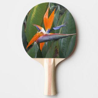 花の卓球ラケット極楽鳥 卓球ラケット