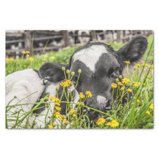 花の子牛のイメージのティッシュペーパー 薄葉紙