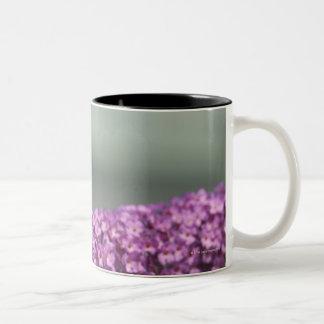 花の孔雀蝶 ツートーンマグカップ