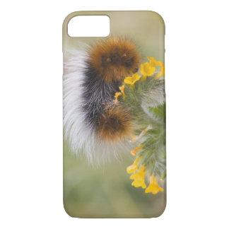 花の幼虫のクローズアップ。 信用次のように: iPhone 8/7ケース
