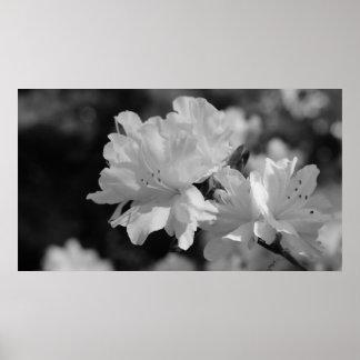 花の庭 ポスター