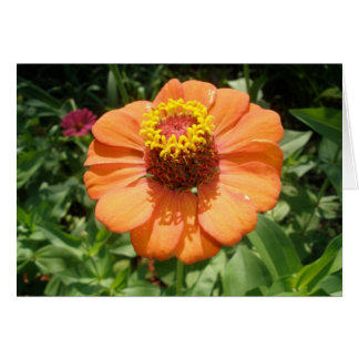 花の愛のため カード