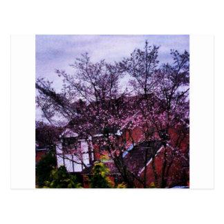 花の最初ビット ポストカード