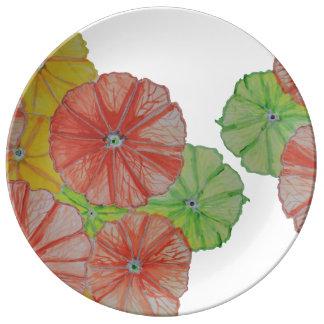 花の柑橘類の切れの磁器皿 磁器プレート