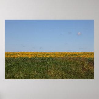 花の汚点 ポスター