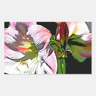 花の白いピンクのアマリリス 長方形シール
