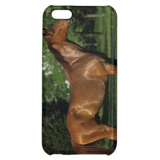 花の純血種の馬 iPhone5C カバー