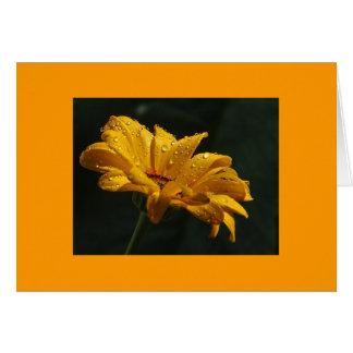 花の結露 カード