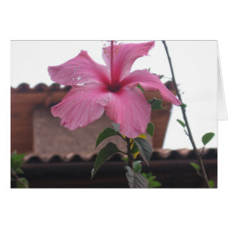 花の美しい カード