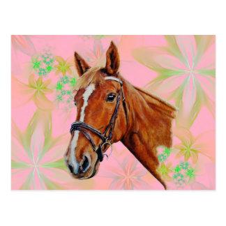 花の背景の馬頭部、 ポストカード