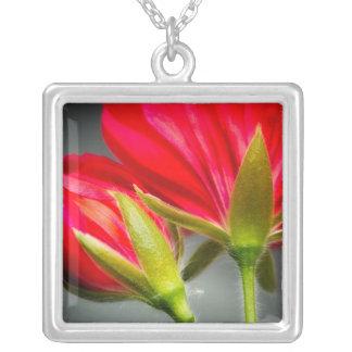 花の背部からのviningゼラニウムのクローズアップ シルバープレートネックレス