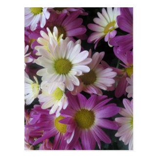 花の花束の蝶庭: エレガントなギフト ポストカード
