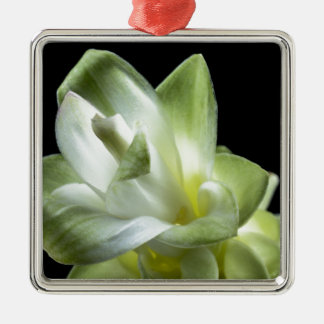 花の花白い愛キスは構成します メタルオーナメント