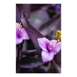 花の蜂 便箋