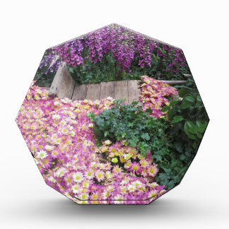 花の蝶庭のベガスのエレガントなカラフルgif 表彰盾