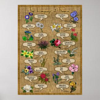 花の言語 ポスター