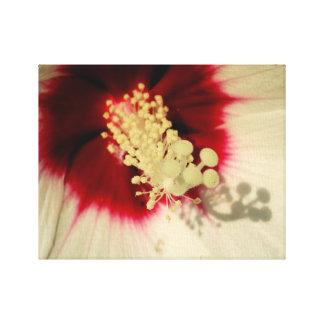 花の近い上りの写真の独身のな芸術ポスター キャンバスプリント