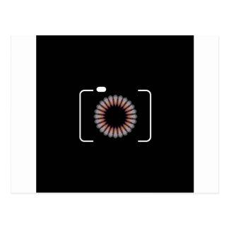 花の開きが付いているデジタルカメラ ポストカード