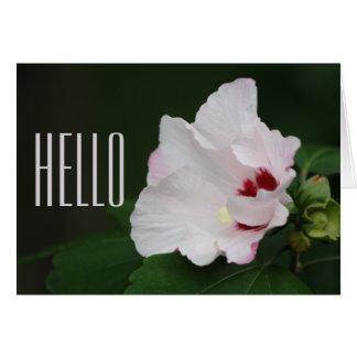 花の開花ムクゲはこんにちは得ます カード