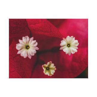 花の顔 キャンバスプリント