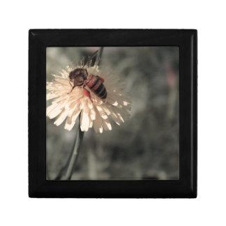 花の《昆虫》マルハナバチ ギフトボックス