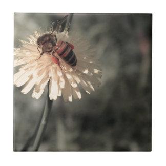 花の《昆虫》マルハナバチ タイル