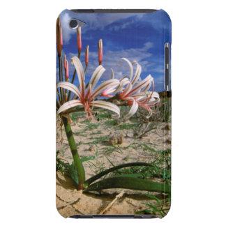 花のVleiユリ(Nerine Laticoma) Case-Mate iPod Touch ケース