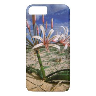 花のVleiユリ(Nerine Laticoma) iPhone 8 Plus/7 Plusケース