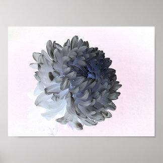 「花びら、紫外花の写真撮影 ポスター