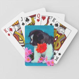 花を持つ秋田の子犬 トランプ