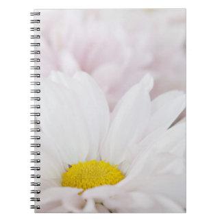 花ピンクの白いデイジーの花のデイジーの花 ノートブック