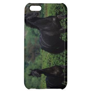 花分野の純血種の馬 iPhone 5C CASE