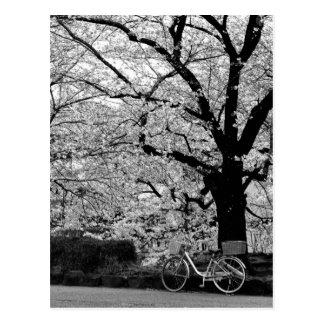 花及び自転車: 日本 ポストカード