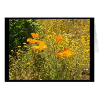 花園の花の写真 グリーティングカード