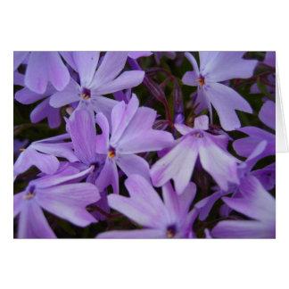 花壇3 カード