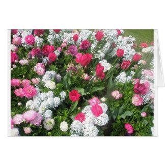 花壇 カード