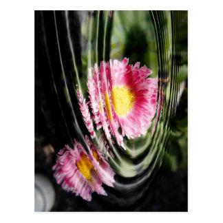 花弁のさざ波 ポストカード
