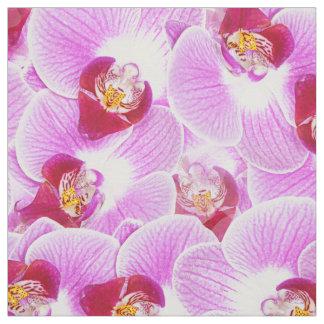 花柄はBGの放射蘭の自然の写真を抽出します ファブリック