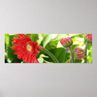 花柄(36x12)、新しい始めのガーベラのデイジー、芽 ポスター